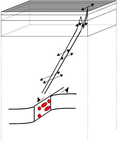 Wave propagation